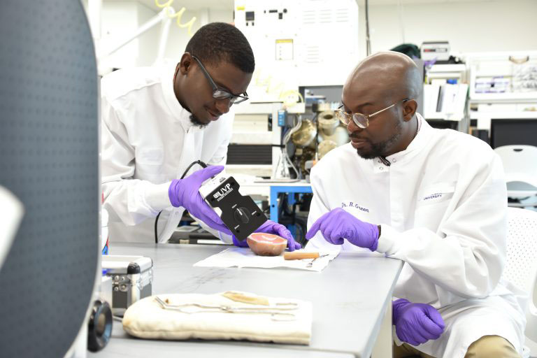 Faculty and student researcher working in a lab.