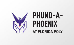 Phoenix fund graphic.
